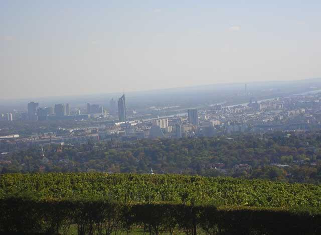 Вид на Вену с холма Cobenzl